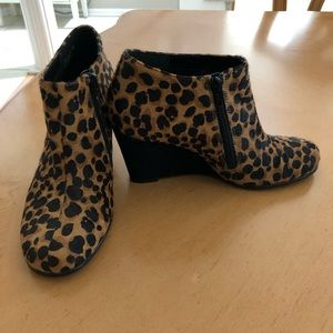 AEROSOLES Shoes - Aerosoles Leopard Wedge Booties